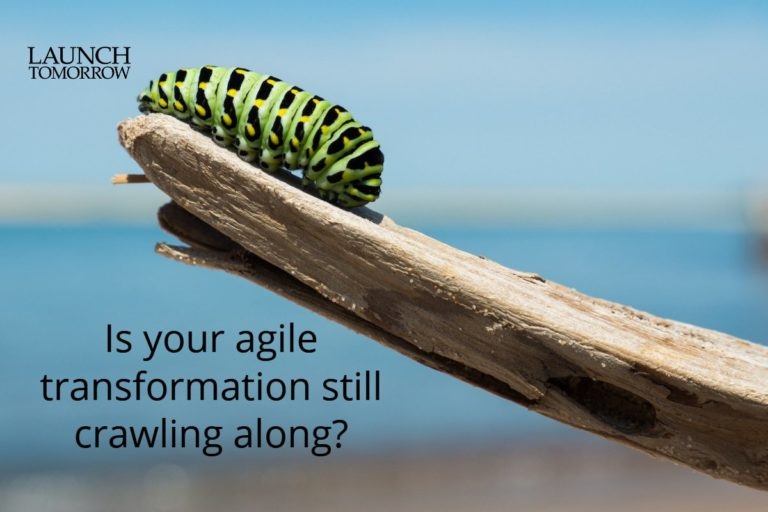 How to know if your company's agile transformation is working